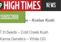 Karma's White OG Makes 2010 Cannabis Cup Winners List