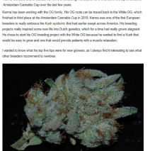 High Times/Harry's World: 5 Grow Tips From Karma