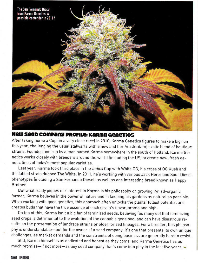 High Times San Fernando Diesel Article